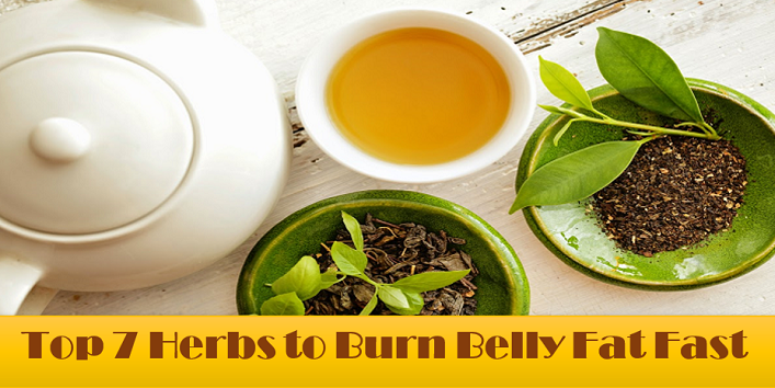 Herbs-to-Burn-Belly-Fat-Fast-cover