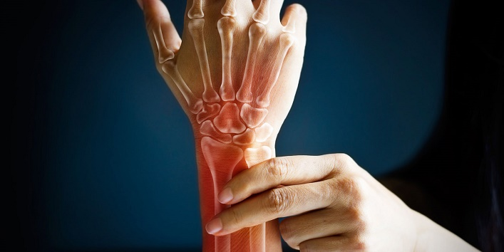 Builds bone tissue