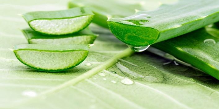 Aloe vera gel and beetroot pack