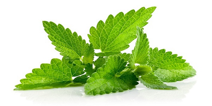 Mint leaf toner